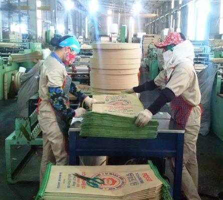 Công nhân sản xuất trong xưởng đóng gói xi măng